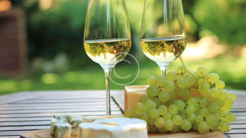 The healing properties of white wine /თეთრი ღვინის სამკურნალო თვისებები/ Лечебные свойства белого вина